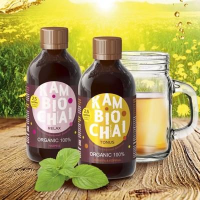 Напиток из чайного гриба комбуча - Камбиочай